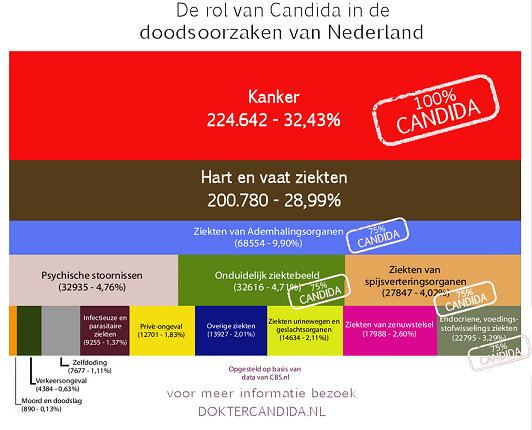 doodsoorzaken nederland
