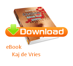 download ebook kaj de vries